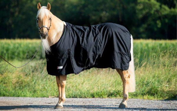 pferdedecke-schwarz