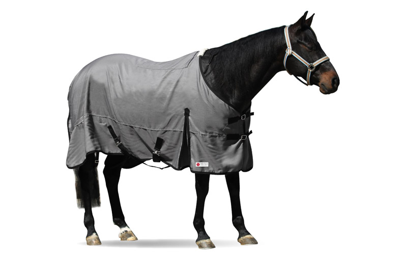 tierdecke-pferd-heitex-sommer